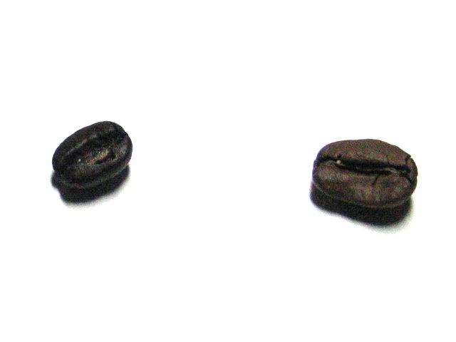 超貴的咖啡豆