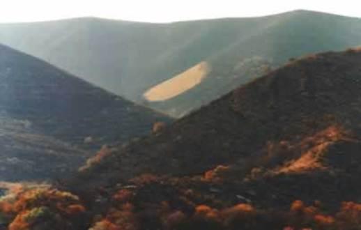 Incendio en el cerro pajarillo (Agosto de 2007)