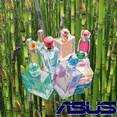asus profumi e bambù