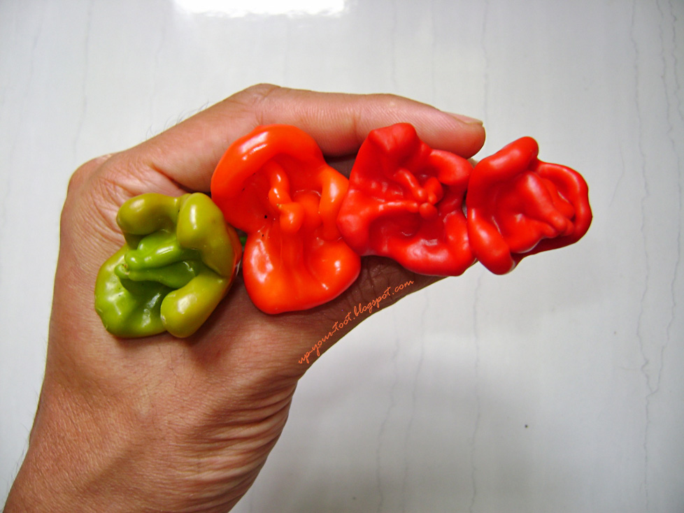 Bishop's Crown peppers, Capsicum baccatum, Monk's Hats