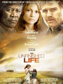 未竟一生 (An Unfinished Life)