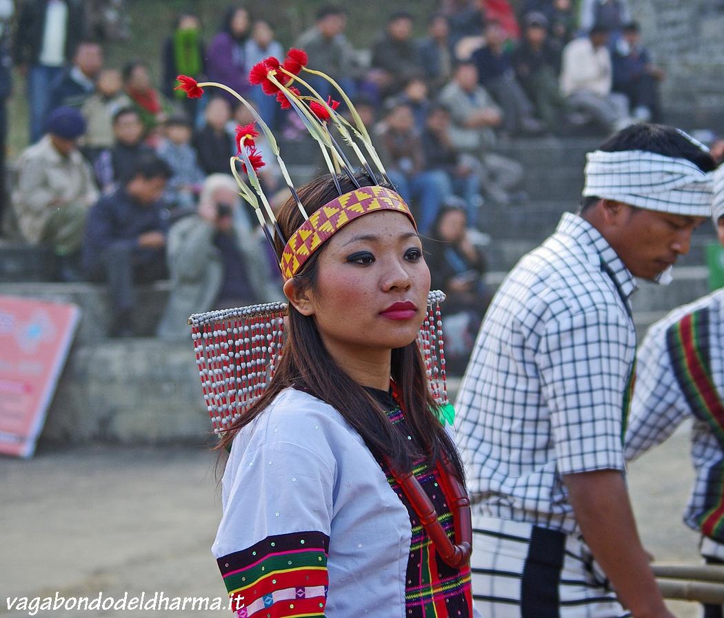 hornbill festival,nagaland