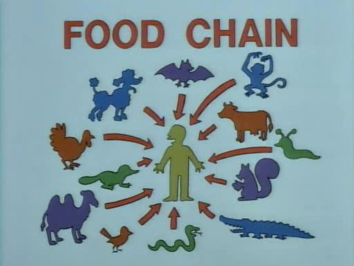 cadena_alimenticia.jpg
