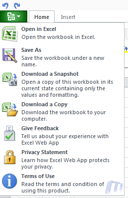 Microsoft Skydrive Office Web Apps Excel