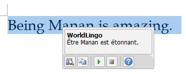 Office 2010 Word Mini Translator