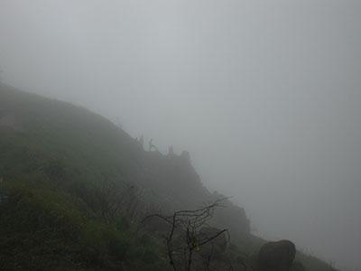 Endless Fog