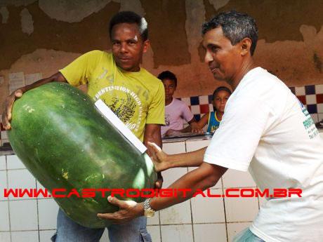 IMAGEM - Pepino gigante de 40 kg