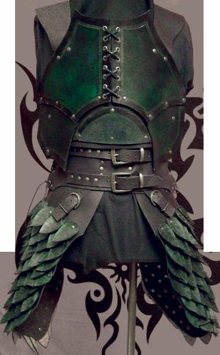 Armure Épique ! -Griffe Du Dragon Noir- Armure-druide.1