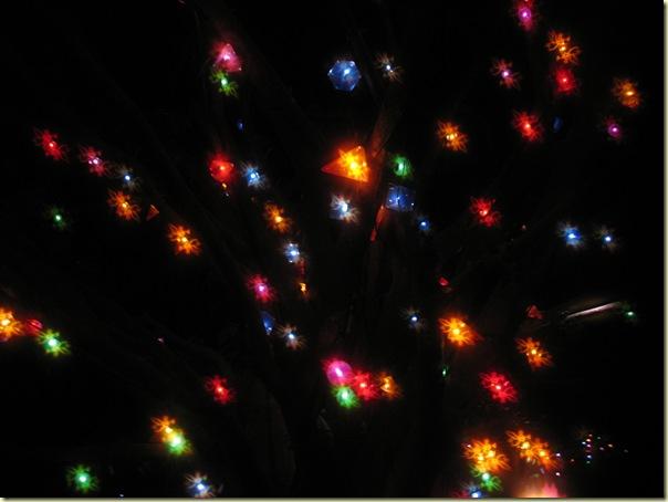 Decembre2008_ 866