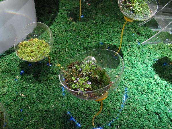宜蘭綠色博覽會