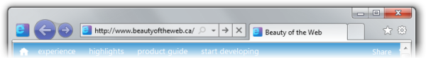 Site icon from beautyoftheweb.ca integration in Internet Explorer 9