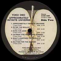 Approximately Infinite Universe USA label
