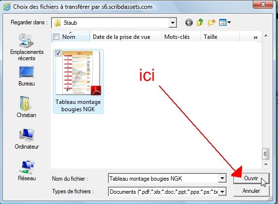 Didacticiel pour inserer un fichier PDF lisible dans un post Scribb%205