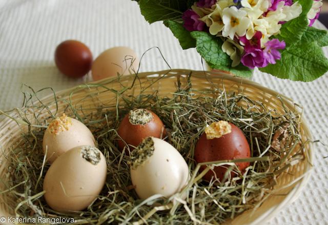 eggssss