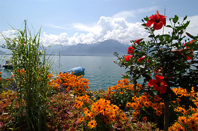 مناظر رائعة من سويسرا VD-MT-18