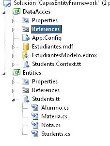 Proyecto Entities