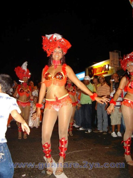 Carnavales de Guanare