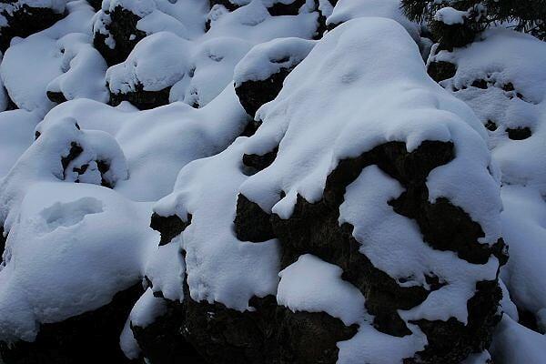 春节召集:阿尔山,玩雪、赏雾凇、泡温泉,最后3人召集
