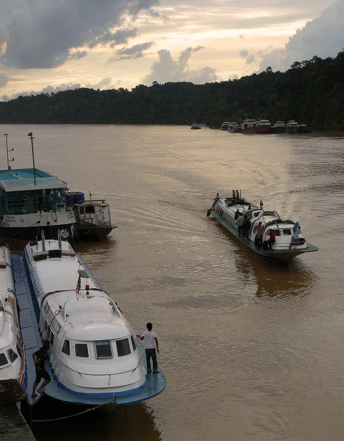 kapit,borneo malese