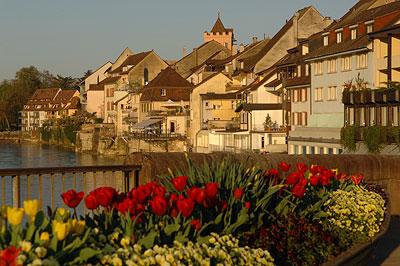 مناظر رائعة من سويسرا DSC_8176