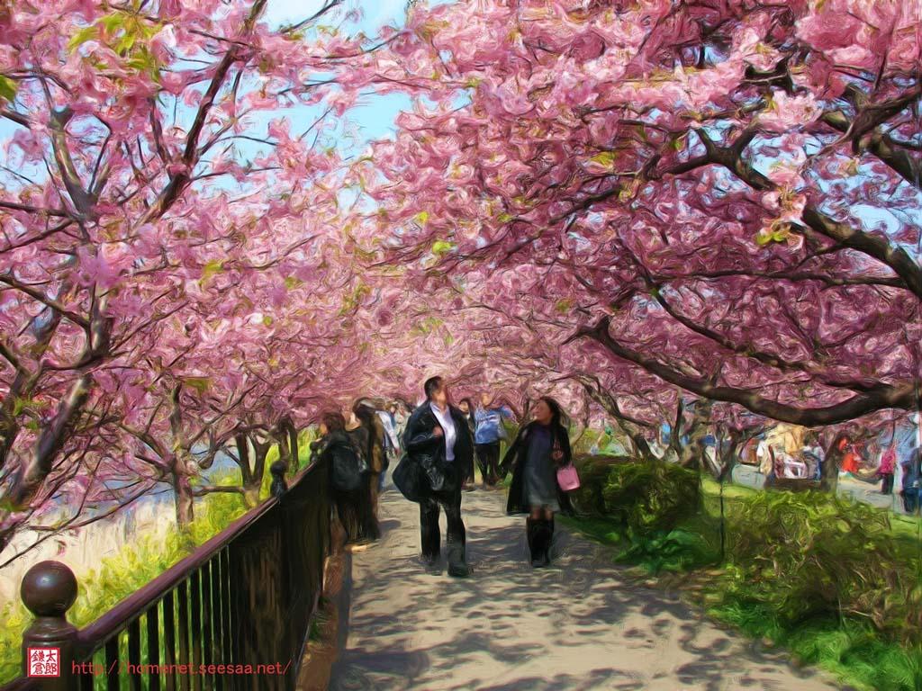 油絵描画風の絵画で「満開!河津桜 花のトンネル」: 写真を絵画に スマートフォン専用ページを表示