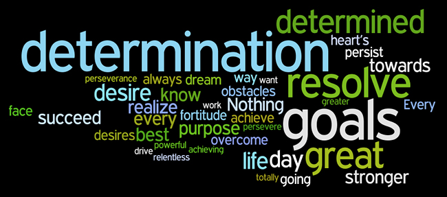 Define determination synonym
