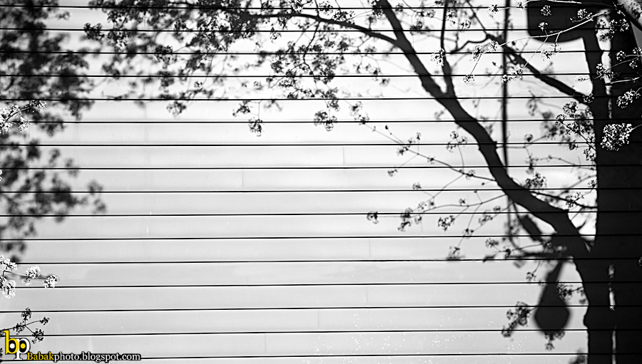 Shadows Frame, Nikon D300, Nikkor18-70@70mm, F4.5, 1/320s, Iso200