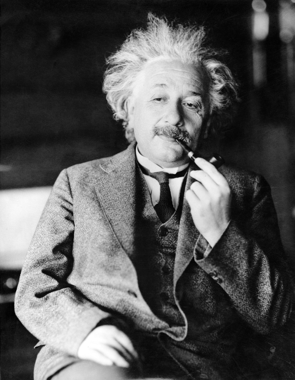 Hola que tal, soy Einstein. Mucho gusto